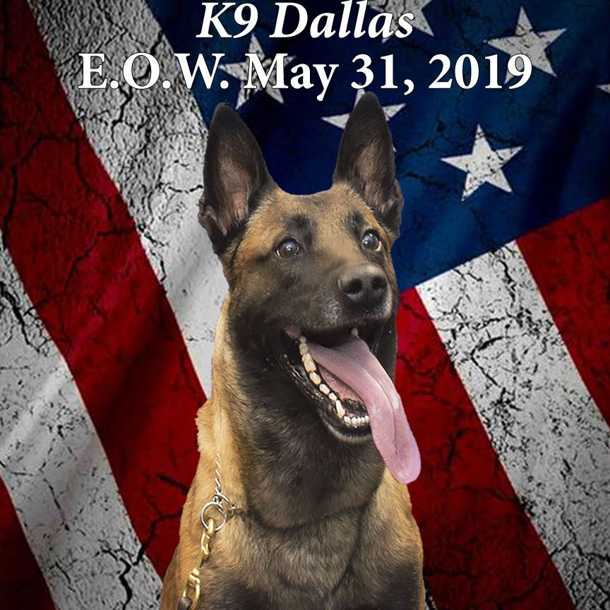 K-9 Dallas End of Watch Photo